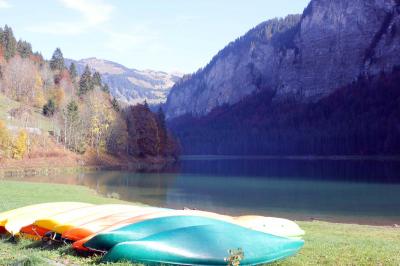 Lac de Montriond: Lac de Montriond 15 minutes drive from l'Ecuela